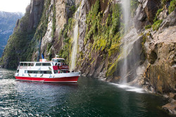 Milford Sound Coach/Cruise/Fly